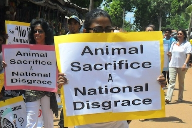 Hindu temple cancels animal sacrifice