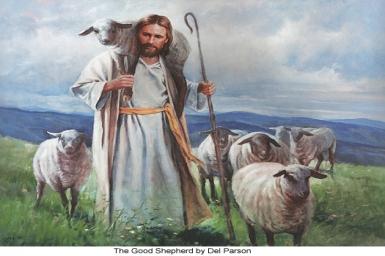 ``I am the good shepherd`` - 4th Sunday (B) of Easter