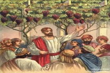 """""""Sent a servant to receive from the tenants his share of the fruit"""": Monday 9th in Ordinary Time (4.6.2012)"""