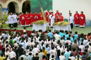 Gospel by pictures of Palm Sunday (Apr. 13rd, 2014)