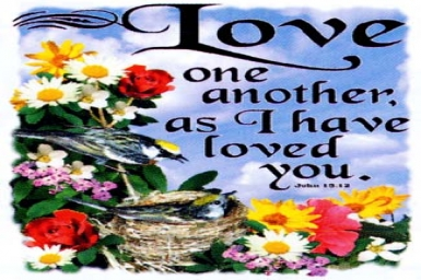 ``...love one another as I have loved you`` - Friday 5th of Easter