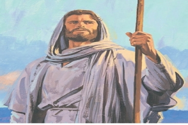 Proclaim the kingdom of God: Gospel by pictures of Sunday XIII in Ordinary Time (30-June-2013)