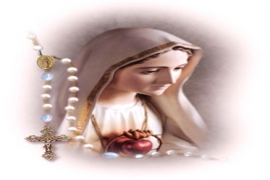 Our Lady of Rosary: Gospel by pictures