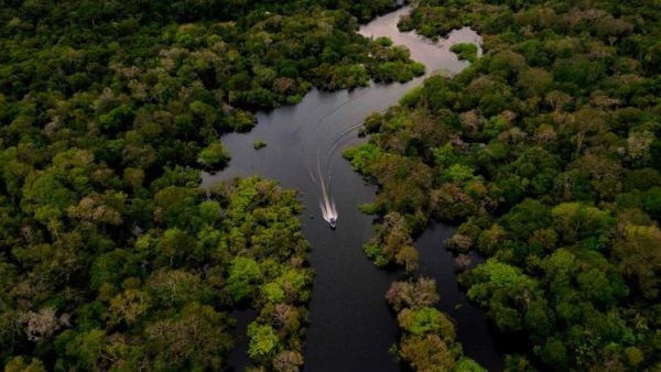 Global Amazon Assembly ends with call to defend region