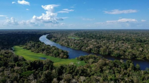 REPAM reports more than 100,000 deaths from Covid-19 in Amazonia