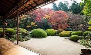 Beginner Zen Books