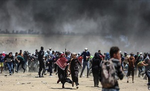Palestine urges UN protection from Israeli settler attacks