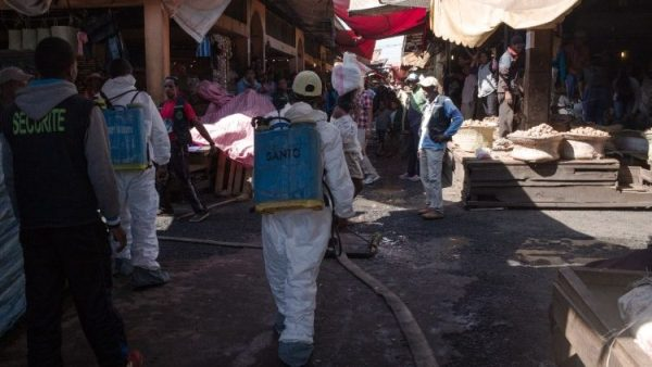 WHO says plague outbreak not high risk