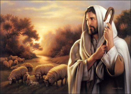 "DAILY MEDITATION: ""I am the good shepherd"""