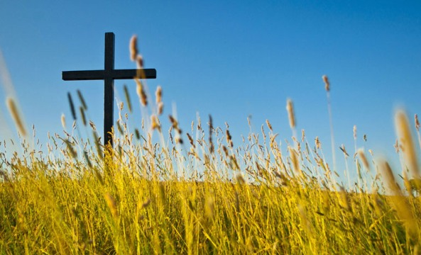 DAILY MEDITATION: ``Whoever wants to serve me, let him follow me...``