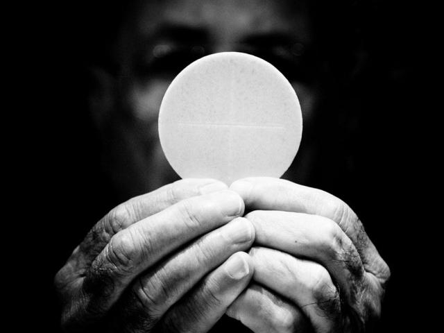 DAILY MEDITATION: ``No one can come to me unless he is drawn by the Father``