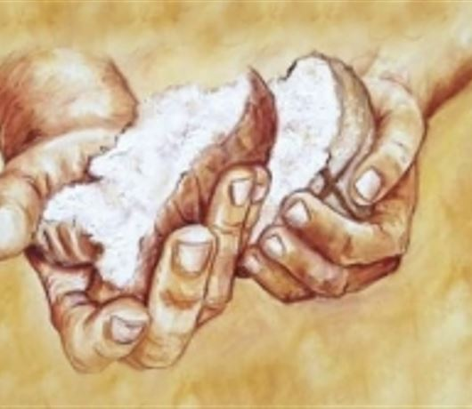DAILY MEDITATION:  ``I am the living bread which has come from heaven``