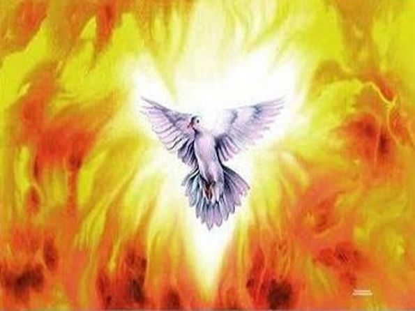 DAILY MEDITATION: ``I have come to bring fire upon the earth``