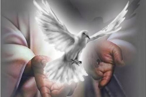 DAILY MEDITATION: ``For the Holy Spirit will teach you at that time what you have to say``