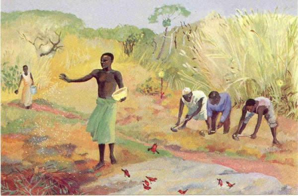 DAILY MEDITATION: ``The sower went out to sow and, as he sowed``