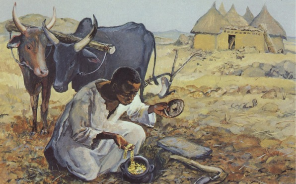 DAILY MEDITATION: ``He goes and sells everything he has, in order to buy that field``