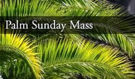 Palm Sunday - English Mass (Live)