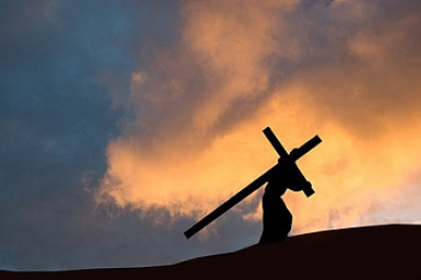 ...take up your cross: Gospel by pictures of Sunday 22nd in Ordinary Time
