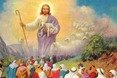 Goodness Shepherd: Gospel by pictures of Sunday XVI in Ordinary Time (22.7.2012)