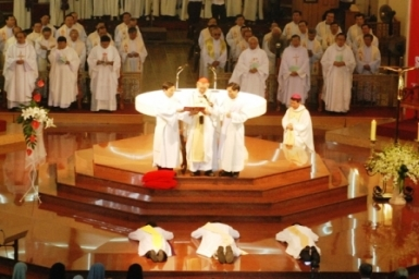Archdiocese of Ho Chi Minh City (2) - Diocesan Activities and Organizations